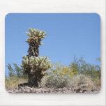 Cactus Tapete De Ratones