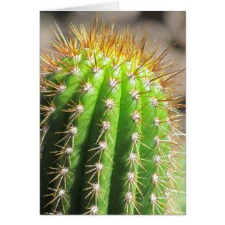 Cactus Tarjeton