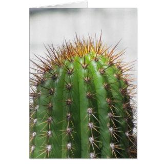 Cactus verde felicitacion