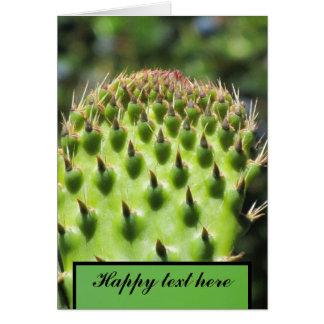 Cactus verde tarjetón