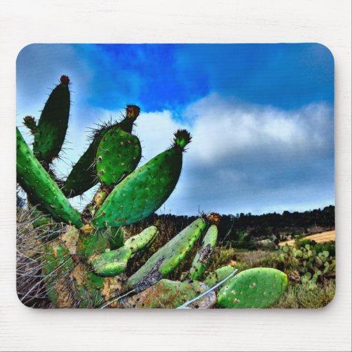 Cactus verdes tapete de raton