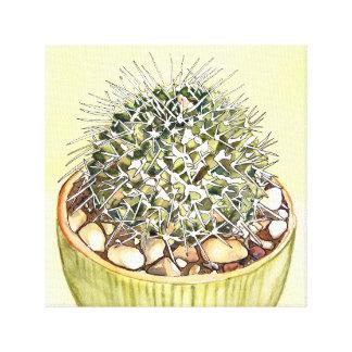 Cactus Watercolor by Debra Lee Baldwin Canvas Print