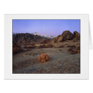 """Cactus With A View"" - Wide Angle Card"