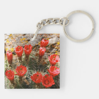 Cactus with Beautiful Red Blooms Square Acrylic Key Chain