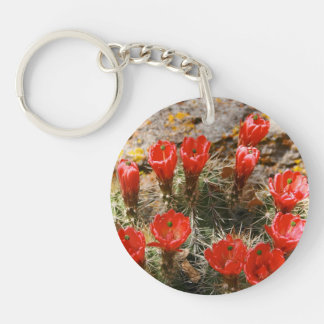 Cactus with Beautiful Red Blooms Keychain