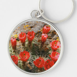 Cactus with Beautiful Red Blooms Key Chains