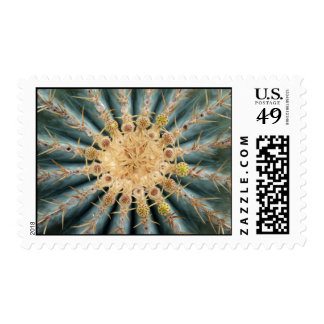 Cactus with buds postage