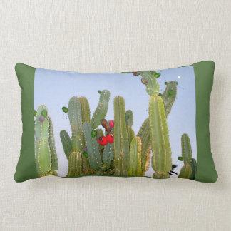 Cactus with Fruit Pillow