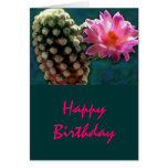 Cactus with Pink Sunlit Bloom Greeting Cards