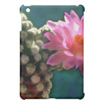 Cactus with Pink Sunlit Bloom Cover For The iPad Mini