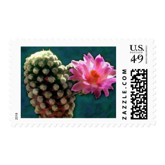 Cactus with Pink Sunlit Bloom Postage