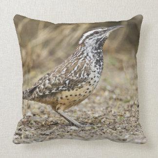 Cactus wren adult foraging throw pillow