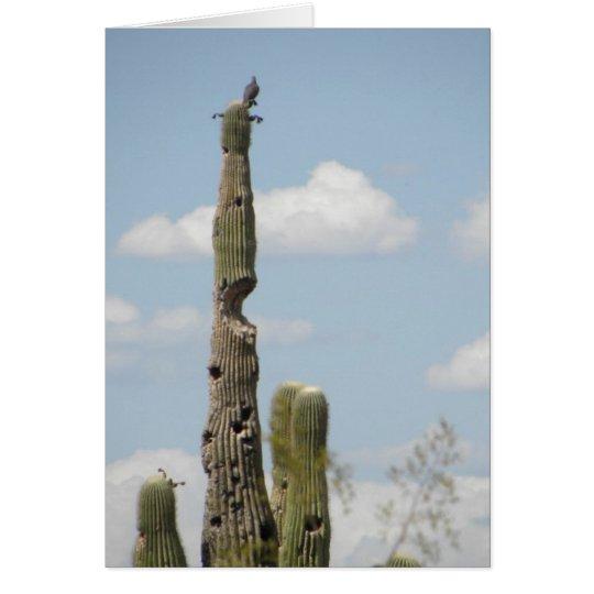 Cactus Wren atop Saguaro Card