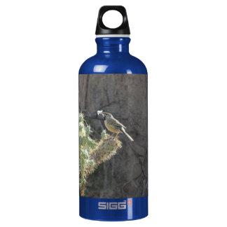 Cactus Wren Bottle