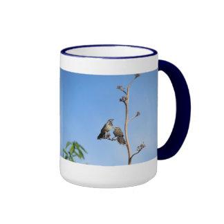 Cactus Wren Couple Mugs