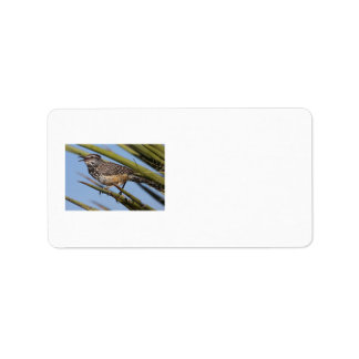 Cactus Wren Personalized Address Labels