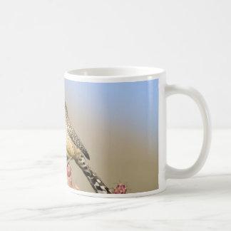 Cactus Wren Coffee Mugs
