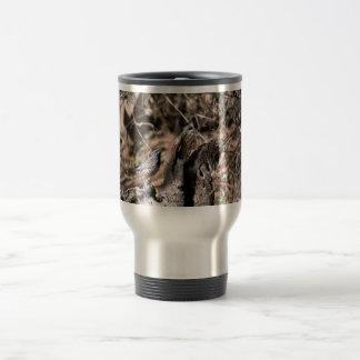 Cactus wren mugs