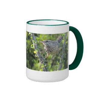 Cactus Wren on Ocotillo Mug
