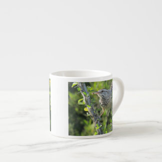 Cactus Wren on Ocotillo Espresso Cup