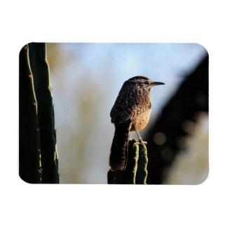 Cactus Wren  Photo Magnet