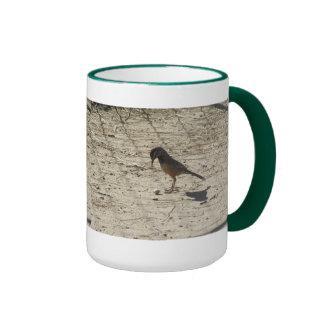 Cactus Wren with Pistachio Coffee Mugs