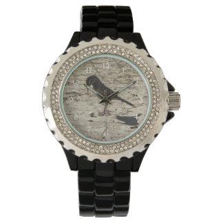Cactus Wren with Pistachio Watch