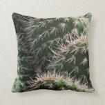 Cactus y espinas del desierto cojin