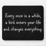 Cada de vez en cuando, un pájaro incorpora su alfombrilla de raton
