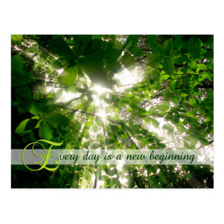 Cada día es un nuevo bosque de los árboles de la l postal