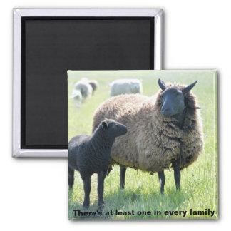 Cada familia tiene un imán de las ovejas negras