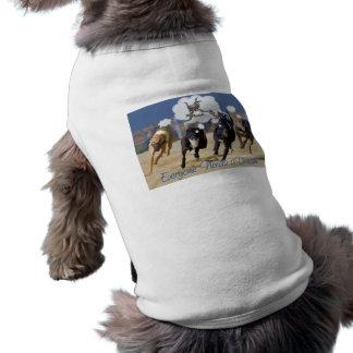 Cada uno necesita un sueño ropa para mascota