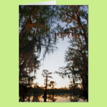 Caddo Lake at sunrise Card