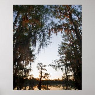 Caddo Lake at sunrise Print