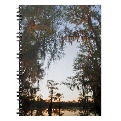 Caddo Lake at sunrise Spiral Notebooks