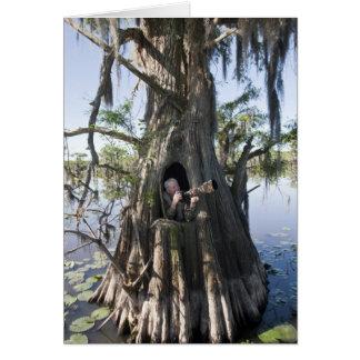 Caddo Lake, hunting blind Card