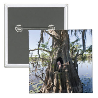 Caddo Lake, hunting blind Pinback Button
