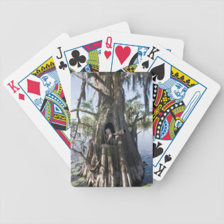 Caddo Lake, hunting blind Bicycle Playing Cards