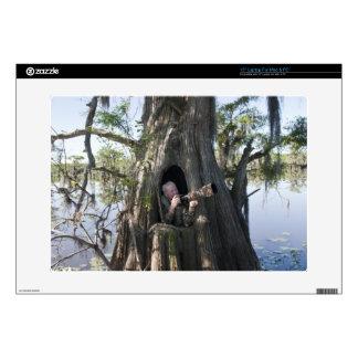"Caddo Lake, hunting blind 15"" Laptop Decals"