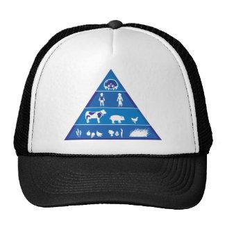Cadena alimentaria revisada gorras