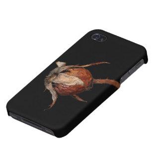 Cadera color de rosa iPhone 4 coberturas