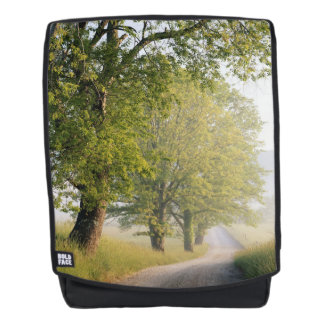 Cades Cove | Great Smokey Mountains, TN Backpack