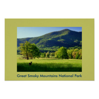 Cade's Cove Photo Greeting Card Poster