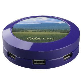 Cades Cove USB Charging Station