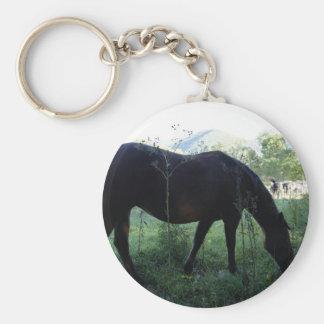 Cades Horse Basic Round Button Keychain