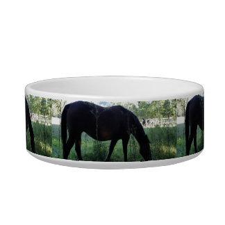 Cades Horse Cat Bowl