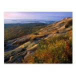 Cadillac Mountain Acadia National Park Post Cards