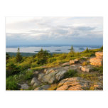 Cadillac Mountain Acadia National Park Postcard