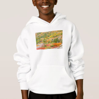 Cadillac Mountain in Fall, Acadia National Park Hoodie