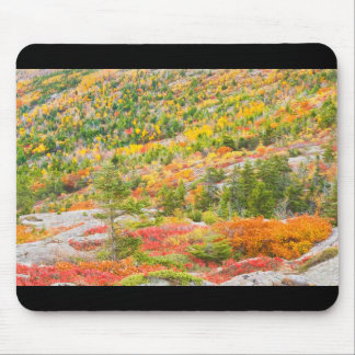 Cadillac Mountain in Fall, Acadia National Park Mouse Pad